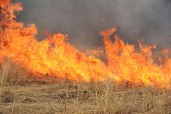 CRP Burn. A CRP farm field being control burned Stock Images