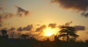 Crépuscule en Afrique Photographie stock libre de droits