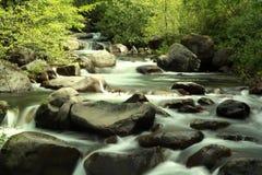 Córrego Fotografia de Stock