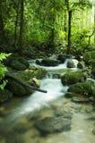 Córrego de Moutain Fotos de Stock