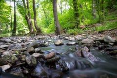 Córrego de Moutain Fotos de Stock Royalty Free