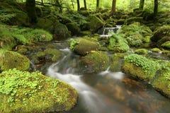 Córrego do Moorland Fotos de Stock