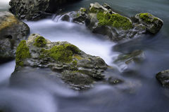 Córrego e rochas Fotos de Stock