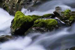 Córrego e rochas Foto de Stock