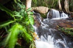 Córrego no vale Fotografia de Stock Royalty Free