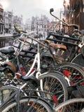 Cru Amsterdam Photographie stock