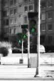 Cru des feux de signalisation de rue Photo stock