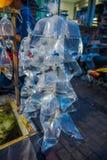 Cru des sachets en plastique, avec différentes espèces de poissons sur un marché à Denpasar, Bali en Indonésie Photographie stock libre de droits