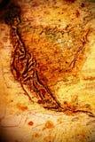 cru sale des Etats-Unis de carte Images stock