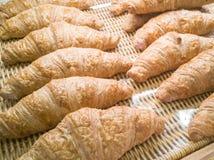 Cruasanes frescos en la imagen de exhibición de la panadería para el fondo Fotos de archivo libres de regalías