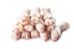 Crubeens o trotones crudos del cerdo foto de archivo libre de regalías