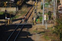 Cruce ferroviario Foto de archivo libre de regalías