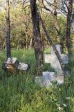 Cruces de piedra en el bosque Imagenes de archivo