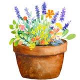 Cruche d'aquarelle avec des fleurs Photos stock