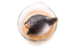 Crucian carp fish Royalty Free Stock Photography