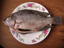 Crucian fish for cooking. In kitchen royalty free stock images