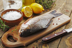 Crucian, fish Stock Photo