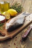 Crucian, fish Stock Images