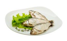 Crucian fish Royalty Free Stock Photo