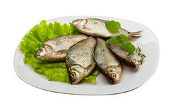 Crucian fish Stock Photo
