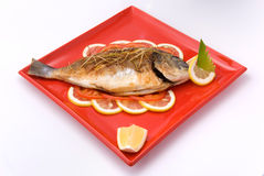 Crucian grill. With lemon decoration on red plate Royalty Free Stock Photography