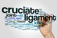 Cruciate ligament word cloud concept on grey background.  stock image