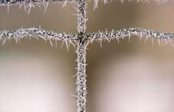 Crucifijo congelado Fotos de archivo libres de regalías