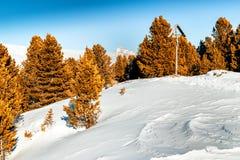 crucifixión Madera-tallada con el fondo de picos coronados de nieve y Fotos de archivo