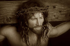 Crucifixtion Portrait in sepia. Jesus Christ Crucifixion portrait image wearing an authentic crown of thorns from Jeruselm looking very compassionate and Royalty Free Stock Images