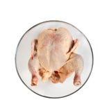 Crude chicken Stock Image