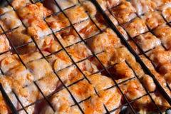 Crude chicken on a barbecue lattice Stock Image