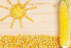 Crude corn Royalty Free Stock Photos