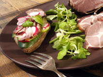 Crude, dried gammon ham with sandwich, salad on plate Royalty Free Stock Image