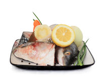 Crude fish pieces. Pieces of fish and vegetables - ingredients for a fish dish Stock Image