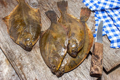 Crude flounder Royalty Free Stock Photos