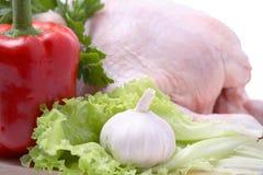 Crude hen Stock Photos