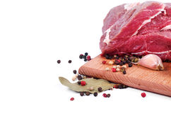 Crude meat and spice Stock Photography