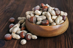 The crude peanuts and hazelnuts Stock Image