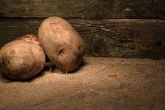 The crude potatoes in a shed: on a sacking at a wall from old bo Royalty Free Stock Image
