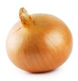 Crude round onion Stock Photo