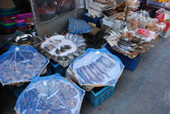 Crude and salted fish with nets set from flies. Sold on the market Bangkok Royalty Free Stock Photography