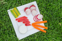 Crudites. With blue cheese souce, cutted vegetable Royalty Free Stock Image