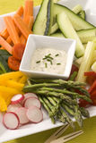 Crudites salad. Stock Images