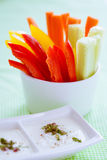 Crudites - vegetable sticks Royalty Free Stock Photography