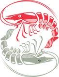 Crudo del camarón cocinado ilustración del vector