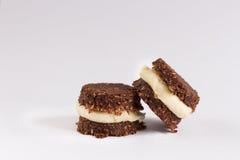 Crudo, vegano, biscotti di paleo Fotografia Stock