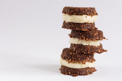 Crudo, vegano, biscotti di paleo Fotografia Stock Libera da Diritti