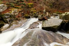 Winter stream in Hell valley, Lozère France Royalty Free Stock Photos