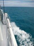 Cruise Stock Afbeeldingen