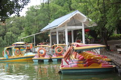 Cruise boat leasing point in shenzhen SiHai Park. The tourists want to visit lake, need to rent a boat on the lease Point in shenzhen SiHai Park Royalty Free Stock Image